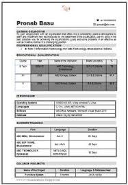 Resume Format For B Tech Freshers Pdf Fishingstudio Com