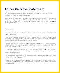 Social Worker Resume Templates Mesmerizing Career Objective Resume Example Social Work Objectives Resume