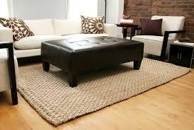 amazing jute area rugs 8 10 jute area rug roselawnlutheran