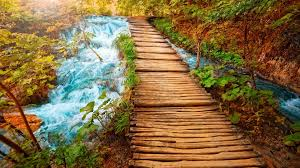 hd backgrounds 1080p nature. Perfect Nature Wooden Path U2013 1080p HD Wallpaper For Hd Backgrounds Nature