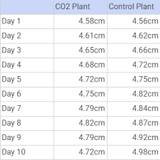 Plant Growth Observation Chart Observations