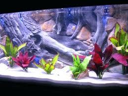 Small Fish Bowl Decorations Cool Aquarium Ideas Cool Fish Tank Decoration Ideas Aquarium Ideas 30