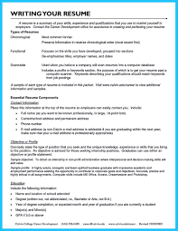 Additional Information On Resume How Professional Database Developer Resume Must Be Written 98