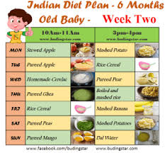 diet plan after birth indian diet plan for 6 months old baby budding star