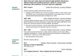 Objectives For Resumes CVs London School of Economics and Political Science objective 100