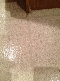 Wet Kitchen Floor The Diy Guinea Pig Deep Clean Your Linoleum