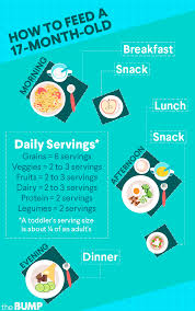 3 Years Old Baby Boy Diet Chart 17 Month Old Development Milestones Toddler Month By Month