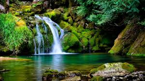 Waterfall Wallpaper Free Download For Pc