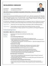 Bank Resume Format Download Resume Pdf Download