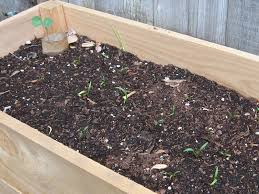 want to grow a vegetable garden for under 25 you can build a