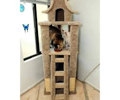 pets furniture. Cat House Posh Tree Designs Wooden Plans Furniture Pets Scratching
