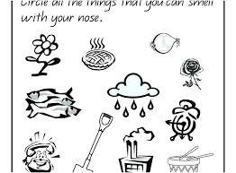 Five Senses Coloring Page 5 Senses Circle Coloring Page Free