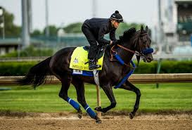 derby racing form racing form our fourth handicapping of kentucky derby horse names