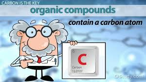 Naming Organic Compounds Rules Practice