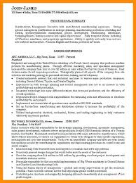 Professional Summary Resume Sample – Districte15.info