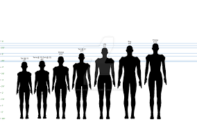 Height Chart Reference Legacy Silhouette At Getdrawings Com Free For Personal Use