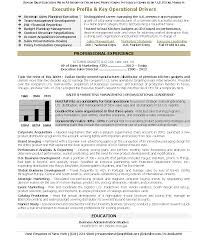 Sample Resume Of Ceo Unusual Ceo Resume Template Contemporary Entry Level Resume 19