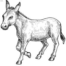 Small Picture Donkey Coloring Page Kids Website For Parents