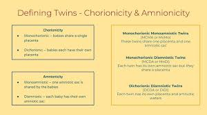 Types Of Twins Chart Multiple Multiples What The Different Types Of Twins Really
