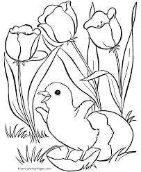 Free Spring Coloring Sheets Preschool Printable