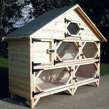 rabbit hutch plans diy indoor pdf