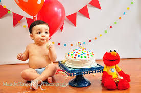 Vincent First Birthday Portraits By Mandy Ringe Photography