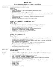 Brokerage Coordinator Resume Samples Velvet Jobs