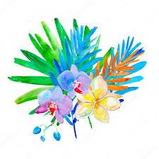 元の夏の花水彩イラスト ストック写真 Olies 52297745
