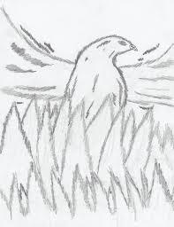 Phoenix Drawings Alysdrawings