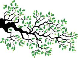 tree branch with leaves vector. vector illustration of green leaf tree branch cartoon | stock colourbox with leaves