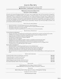 Resume Format For Accounts Executive New Template Sample Retail