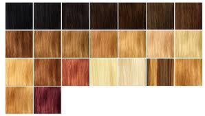 Hair Extensions Match Your Colour Chart Sophie Hairstyles
