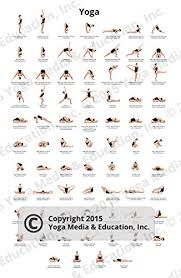 Yoga Pose Chart Poster Amazon Com Poster Of Yoga Poses And Their Names Posters