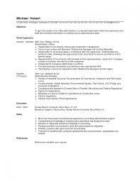 Network Administrator Resume Template Saneme