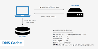 What Is Dns Cache And How To Flush It Keycdn Support
