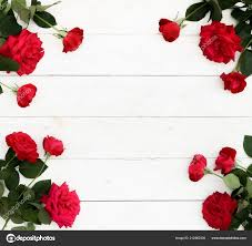 flowers background bouquet frame beautiful red roses white wooden background stock photo