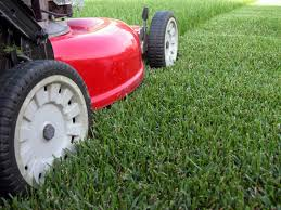 Budget Lawn Care Contact Us Budget Lawn Mowing