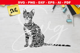 Carole baskin hey there all you cool cats and kittens svg cut file download cricut & silhouette compatible. 237 Cat Png Designs Graphics