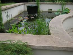 picture of the ultimate koi pond