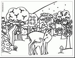 Coloringpages Of Animals Jaguar Animal Coloring Pages Realistic And