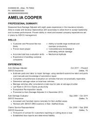 Total loss adjuster resume