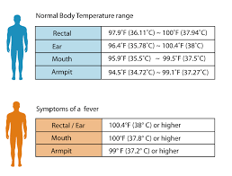 37 Veritable What Is The Normal Body Temperature