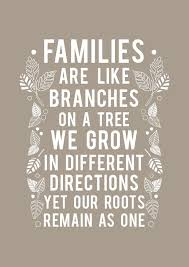 Family Quotes And Sayings Inspiration Top 48 Family Quotes And Sayings 48 Family Quotes Sayings