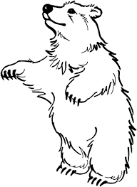 The Bear Stand Up Coloring Page