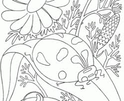 Small Picture Free Printable Insects Coloring Pages Cute Insect Coloring Pages