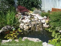 Small Picture 20 Backyard Garden Ponds for All Budgets Garden ponds Backyard