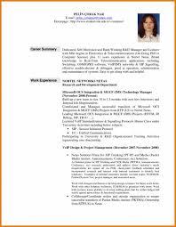 Career Overview Resume Musiccityspiritsandcocktail Com