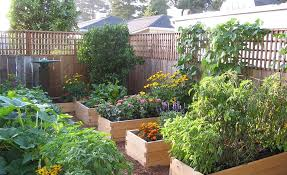 best plants for raised beds 115 bed height best vegetables for small raised beds
