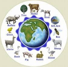 heifer circle