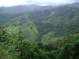 Resultado de imagen para fotos de letreros que identifique a las terrenas en samana